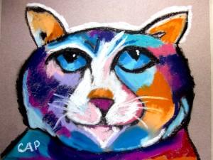 zcolleen-cat